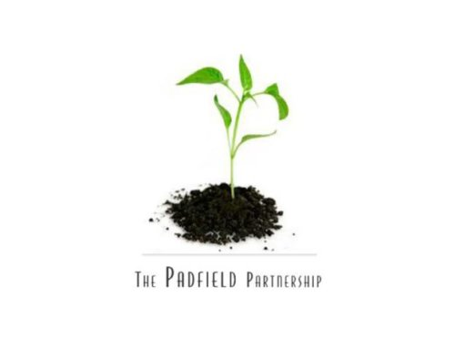 Padfield Partnership – How to network internally – for agility
